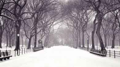 """Photo of """"Canto della neve silenziosa"""" di Hubert Selby jr."""