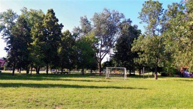"""Photo of Le """"palestre nel verde"""": lo sport organizzato nei parchi di S.Ilario e Calerno"""
